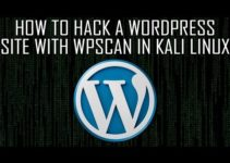 How to hack a WordPress site with WPScan in Kali Linux 7