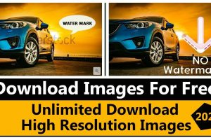 How To Download Shutterstock Images For Free Without Watermark 2021? 10